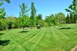 Lawn Care St. Joseph Mo